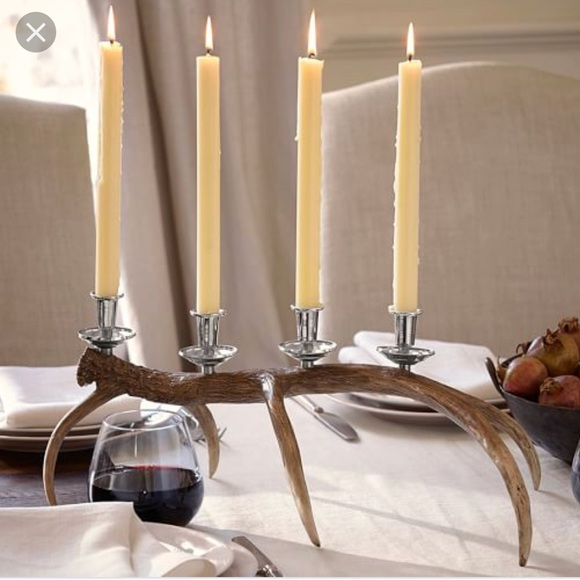 Other - Pottery Barn table centerpiece antler